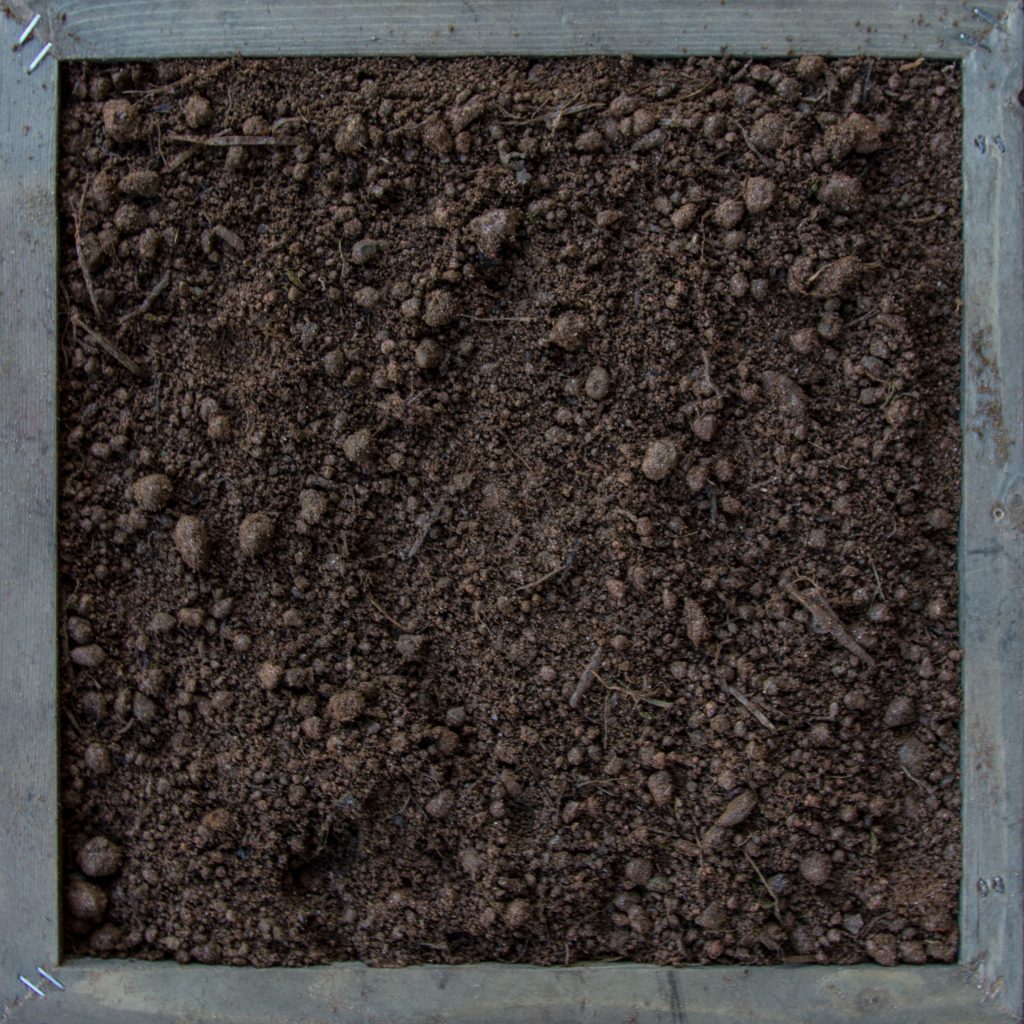 FILL DIRT (SCREENED)