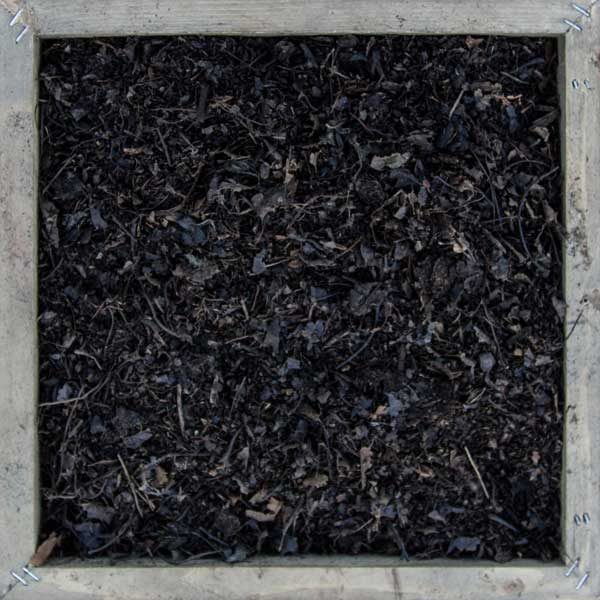 Organic nutrient rich Dark black Leaf Mulch