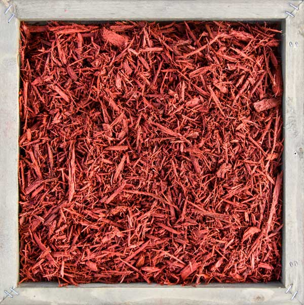 up close photo of shredded Colorized Red Mulch